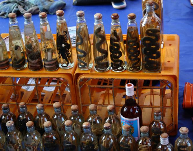 Κρασί από φίδι
