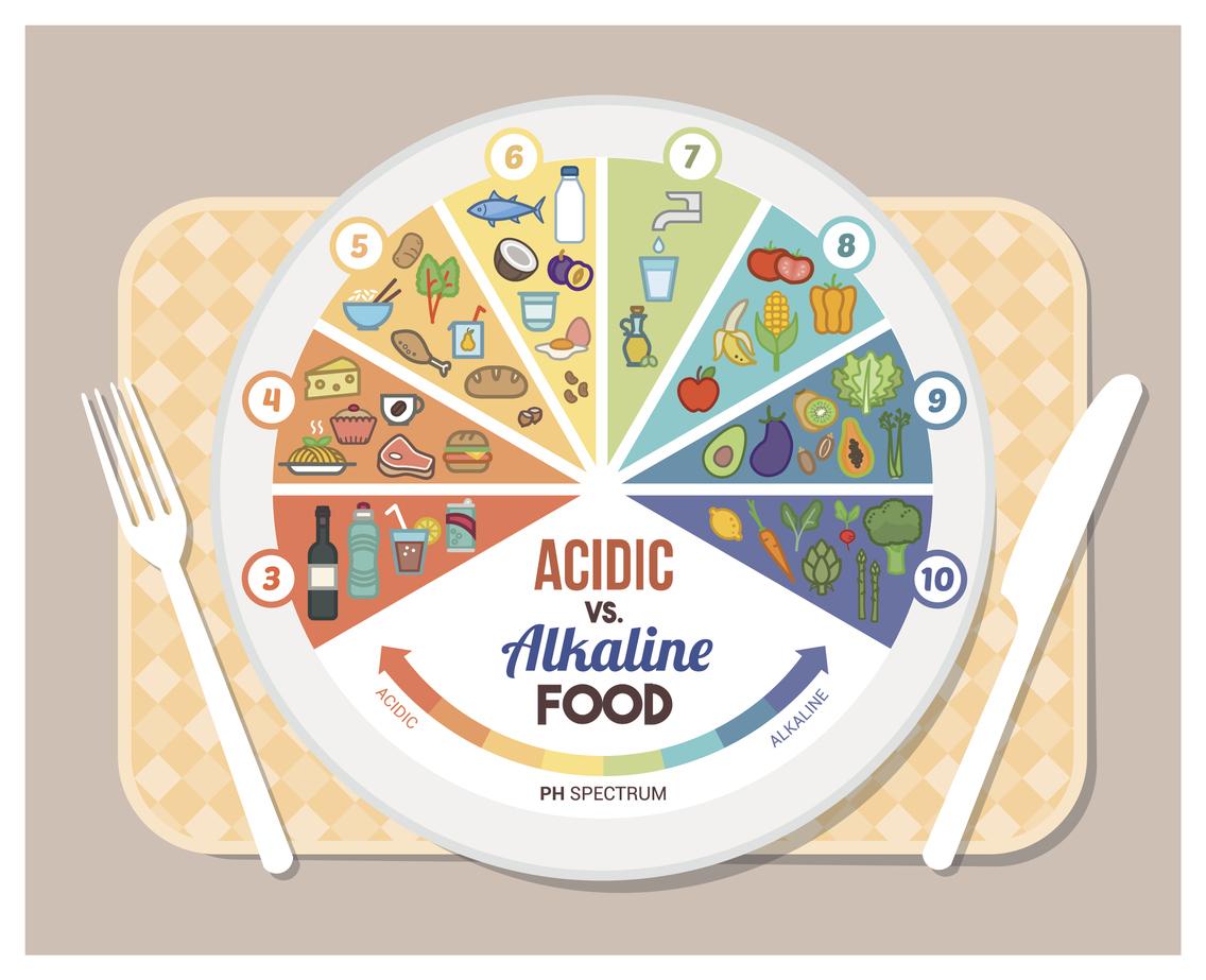 Το να καταναλώνει κανείς τις περίφημες αλκαλικές τροφές είναι σημαντικό και μάλιστα υψίστης σημασίας για την ισορροπία του σώματος. Δεδομένου ότι ένα υπερβολικά όξινο σώμα μπορεί μακροπρόθεσμα να οδηγήσει σε διάφορα προβλήματα υγείας και διαταραχές σας παρουσιάζουμε ξανά ένα ακόμη άρθρο για τις αλκαλικές τροφές που τόσοαγαπάτε. Προκειμένου να αποφευχθεί η ανάπτυξη σοβαρών ασθενειών, είναι σημαντικό το pH του αίματός να παραμείνει ισορροπημένο. Είτε το πιστεύετε είτε όχι, πολλές διαταραχές που επηρεάζουν την υγεία μας σχετίζονται με υπερβολική οξύτητα, η οποία προκαλείται από την κακή και μη ισορροπημένη διατροφή.