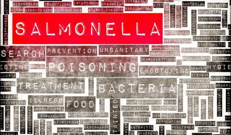 Πως να προφυλαχθείτε από το βακτήριο της Σαλμονέλας