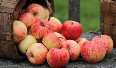 Γιατί ένα χαλασμένο μήλο, χαλάει και τα υπόλοιπα;