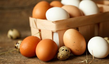 Γιατί μερικοί κρόκοι και τσόφλια αυγών έχουν διαφορετικά χρώματα;