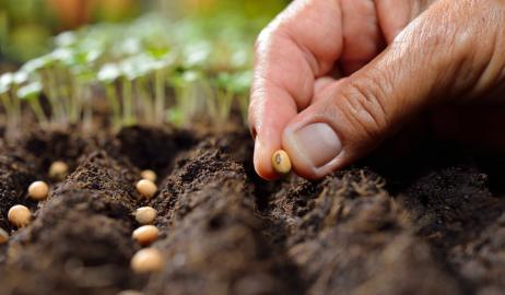 Η Παγκόσμια Τράπεζα Σπόρων και η παγκόσμια γεωργική κληρονομιά