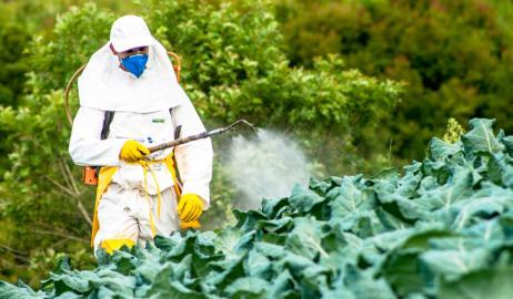 Επικίνδυνα φυτοφάρμακα στο πιάτο μας