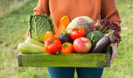 Ας εντοπίσουμε τη διαφορά ανάμεσα στα φρούτα και τα  λαχανικά…