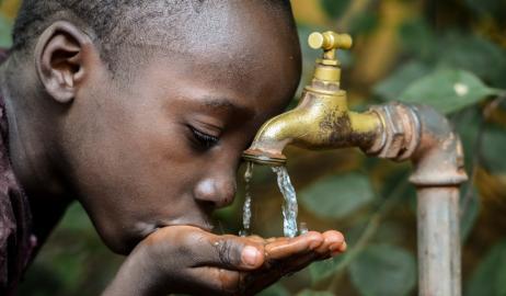 Σκόνη από σόγια που έχει υποστεί ζύμωση προσφέρει μια καινοτόμο λύση στον καθαρισμό του νερού