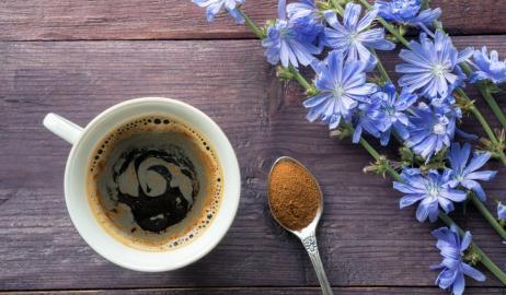 Καφές από ραδίκια, η φυσική μη-καφεϊνούχα εναλλακτική
