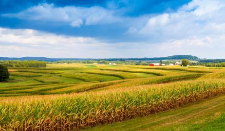 Τα ανθρώπινα υγρά απόβλητα θα μπορούσαν να είναι πλούσιο σε πόρους λίπασμα για την παγκόσμια γεωργία