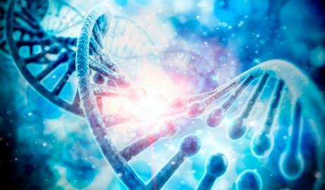 Πώς η διατροφή μπορεί να διατηρήσει τα κύτταρα υγιή και νέα