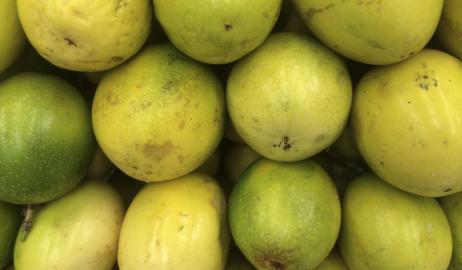 Αυτό το φρούτο του Αμαζονίου μπορεί να βοηθήσει στην πρόληψη της παχυσαρκίας