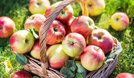 Ενδιαφέροντα διατροφικά - και όχι μόνο- στοιχεία που πιθανώς δεν ξέρετε για τα μήλα