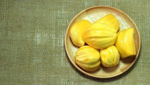 jackfruit-xaraktiristika