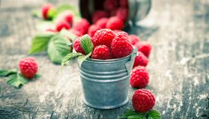 Raspberries in the small bucket