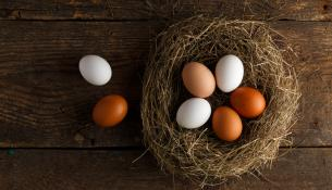 αυγά διαφορετικού χρώματος