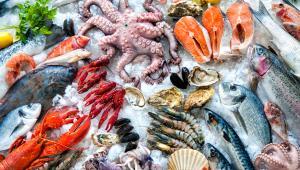 Τα θαλασσινά στη διατροφή μας