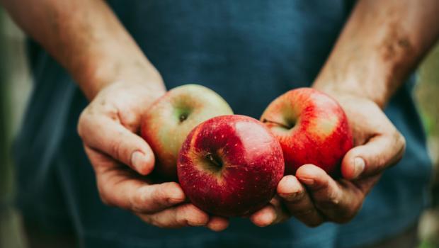 Δύο μήλα την ημέρα μειώνουν τον κίνδυνο καρδιοπάθειας