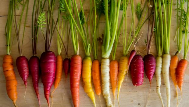 Το DNA του καρότου αποκαλύπτει πού οφείλει το χρώμα και την θρεπτική του αξία