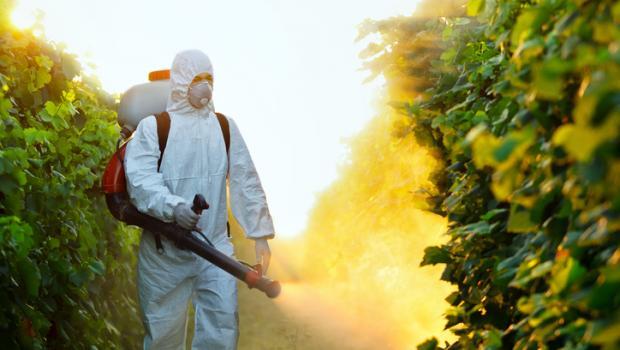 Εντομοκτόνα: επικίνδυνα για τον θυρεοειδή
