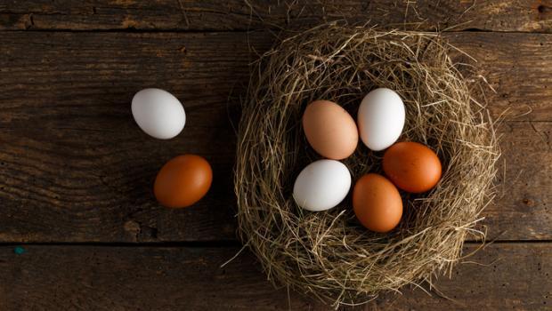 Ποιες διαφορές έχουν τα καφέ από τα άσπρα αυγά;