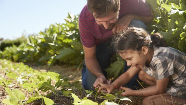 Η Γαλλία παραμένει παγκόσμιος ηγέτης στο δείκτη βιωσιμότητας των τροφίμων