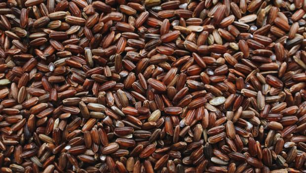 Καστανό ρύζι, ένας διατροφικός θησαυρός